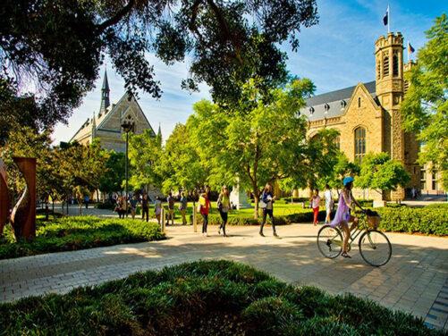 universidades de australia